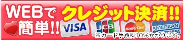 VISA MasterCard AmericanExpress DinersClub