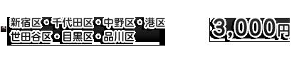 荒川区・足立区・新宿区・中野区・品川区・港区・千葉中間※船橋方面 3,000円